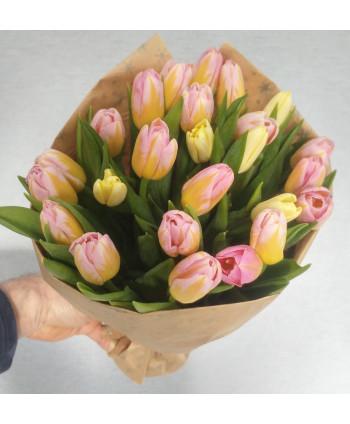 Тюльпаны Крафт